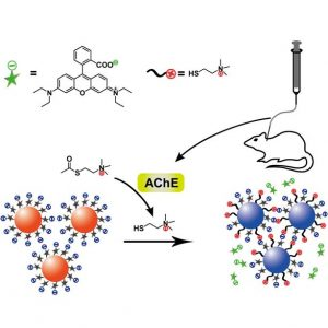 Gold-Nanoparticle-Based Assay for Alzheimer's Disease