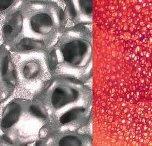 celular ceramics for porous burners