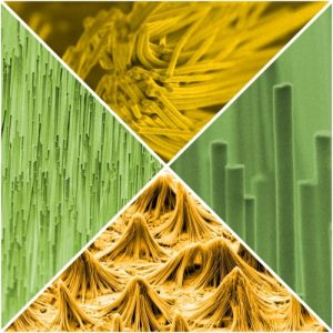 An assortment of nanostructures