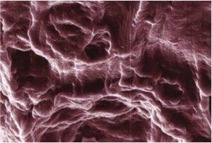 PVA clay nanocomposite hydrogel