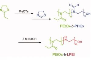 Schematic representation of the synthesis of PEtOx-b-LPEI.