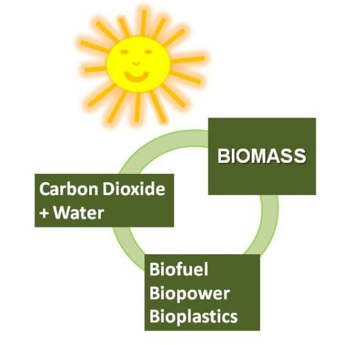 The illusion of a closed carbon cycle