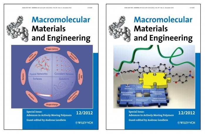 Front Cover and Back Cover of the Special Issue on Actively Moving Polymers