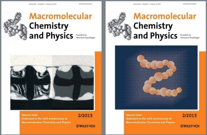 Front Cover and Back Cover of the MCP Special Anniversary Issue