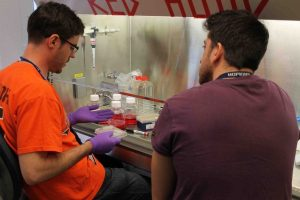 Students in the laboratory  making biomedical materials