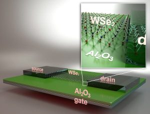 Schematic view of a back-gated field effect transistor fabricated by UCSB researchers using monolayer tungsten diselenide (WSe2) channel material. Image: Peter Allen, UCSB.