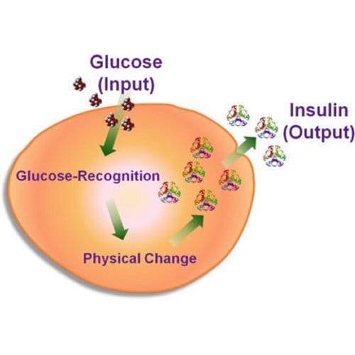 responsive material for insulin delivery