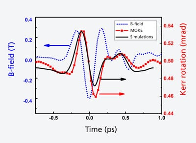A pulse from a terahertz laser (blue) controls the magnetisation of a material: the magnetisation (red - determined via the magneto-optic Kerr effect MOKE) follows the laser pulse's magnetic field with a slight delay. The black curve shows the prediction of a computer simulation. Source: PSI