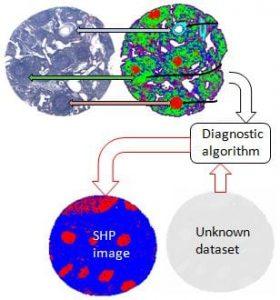 Spectral histopathology process