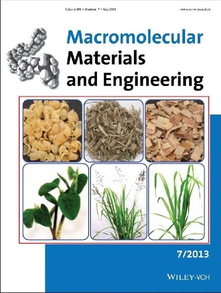 Cover Macromol Mater Eng