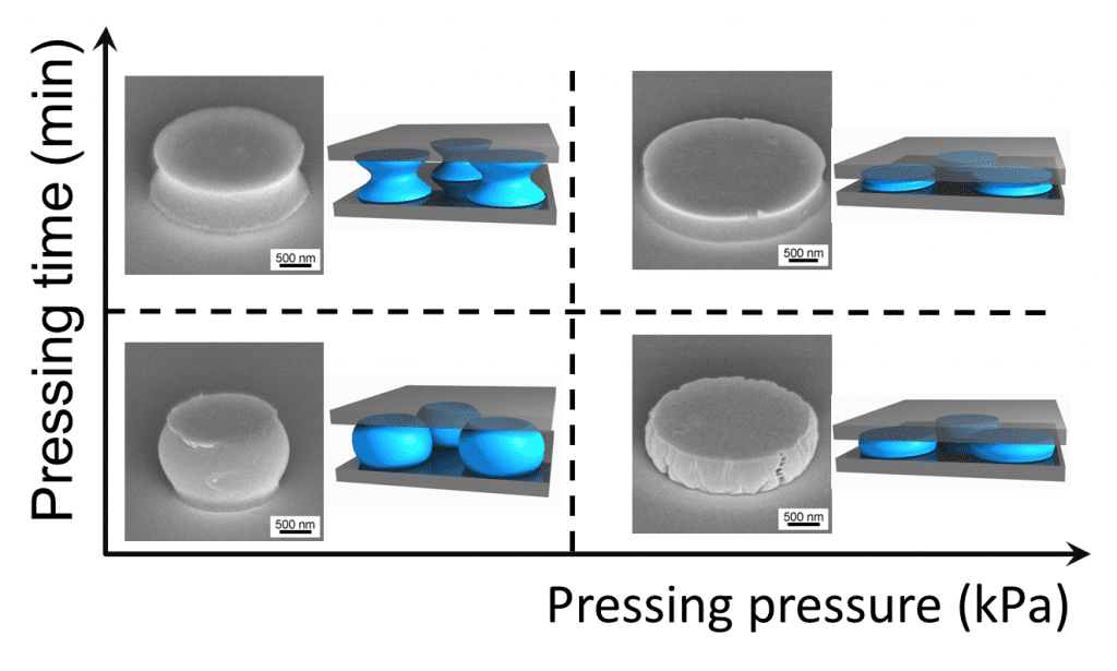 SEM Images of Anisotropic Polystyrene Particles