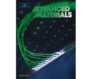 Working model of the programmable material, shown on the cover of Advanced Materials, issue March 5th, 2014.