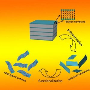 polymeric nanosheets