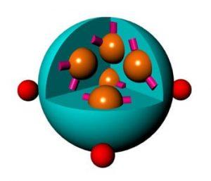 A schematic of the doxorubicin-loaded nanoparticle.