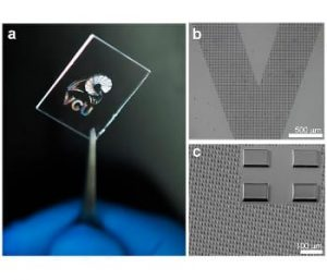 A wide range of patterns and features can be formed from silk proteins at small length scales. For example, microscale dots can be printed on glass to form a silk hologram. Image: Vamsi Yadavalli, Ph.D./VCU.