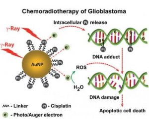 gold-nanoparticle-anti-cancer-system