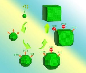 Berkeley Lab researchers found that differences in ligand mobility during crystallization cause the low index facets – {100}, {110} and {111} – to stop growing at different times, resulting in the crystal's final cubic shape. Image courtesy of Haimei Zheng group.