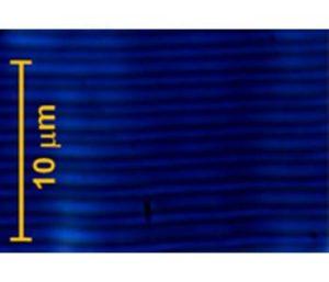 beam-steering-liquid-crystals