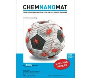 chemnanomat-front-cover