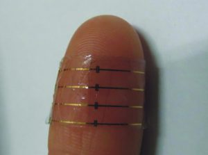 organic-electrochemical-transistor-operated-in-direct-contact-with-the-skin