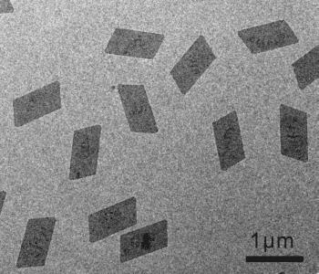 Rh-ultrathin-nanosheets