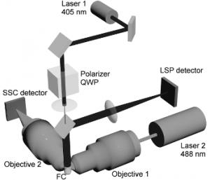 cytoa22621-Materials Views