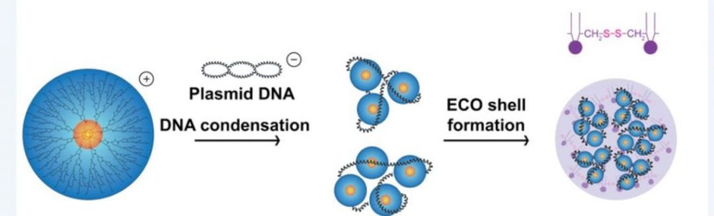 non-viral-nanoparticles-gene-therapy