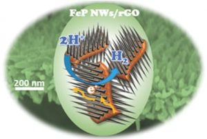 New electrocatalyst material composed of iron phosphide (FeP) nanowires (NWs) and reduced graphene oxide (rGO).