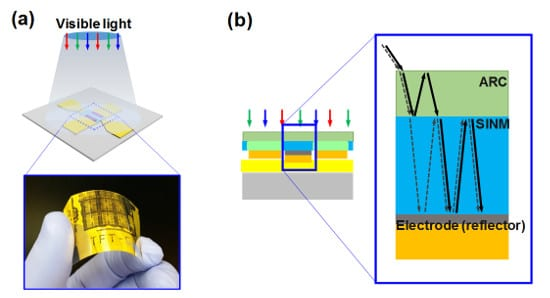 """a) An optical image of the flexible silicon phototransistor on a bent plastic substrate. b) A schematic of incident light paths enabled by the innovative """"flip-transfer"""" fabrication method."""