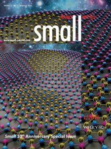Small-12-01_U1