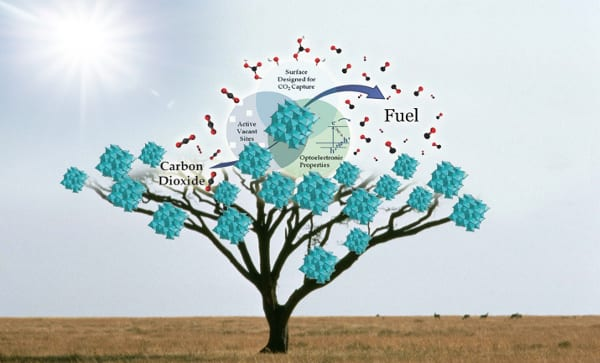 Solar fuels tree. Graphic courtesy of Chenxi Qian.