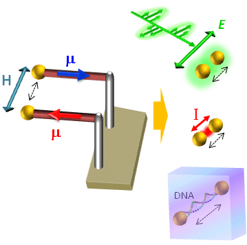Remote Magneto-Mechanical Nano-Actuation