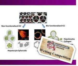 Biofuntionalized_Hydrogels_Tissue_Engineering_writing_competition