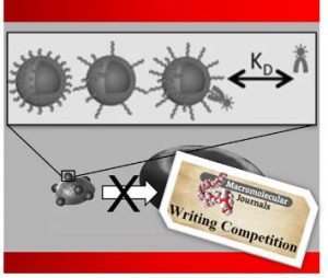 Polymer_based_nanomimics_writing_competition
