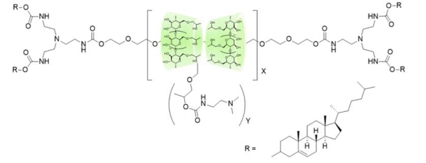 polyrotaxanes-dna-deliver-2