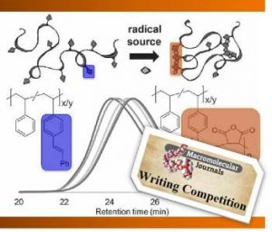 single_chain_nanoparticles_writing competition