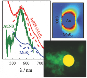 Spectral Characteristics of Noble Metal Nanoparticle–Molybdenum Disulfide Heterostructures