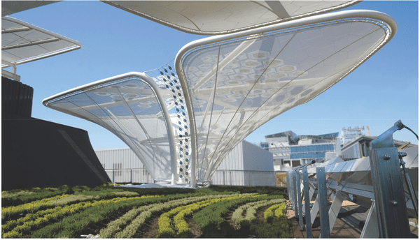 Architectural Highlight – OPV Solar Trees