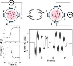 nanofibres perform strong optical anistropy