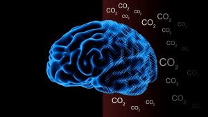 ozin_co2-on-the-brain-v3img1-docx