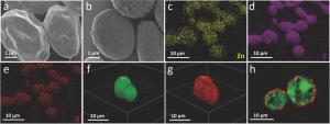 sem-zif8-coated-yeast-cells