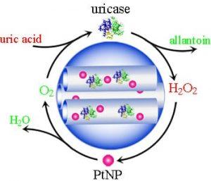 novel-artificial-metalloenzyme