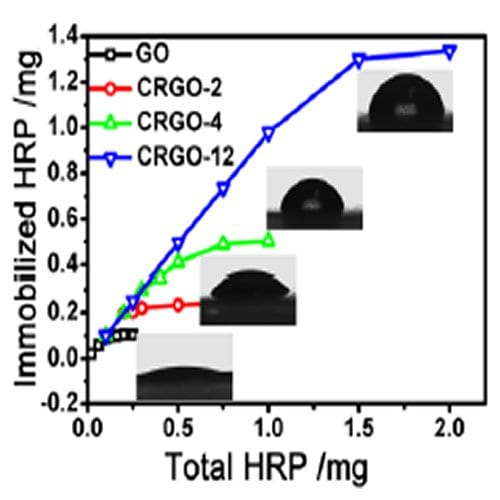Highly Active Enzymes on Graphene Oxide Surface