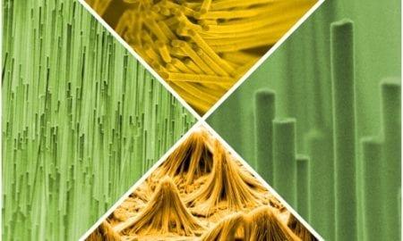 An assortment of nanostructures