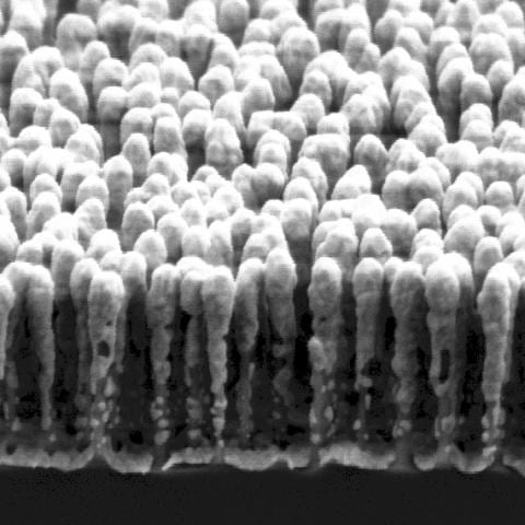 Fabrication of Silicon Nanopillars for SERS
