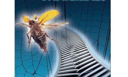 Advanced Materials Cover: Biomimetic Velcro