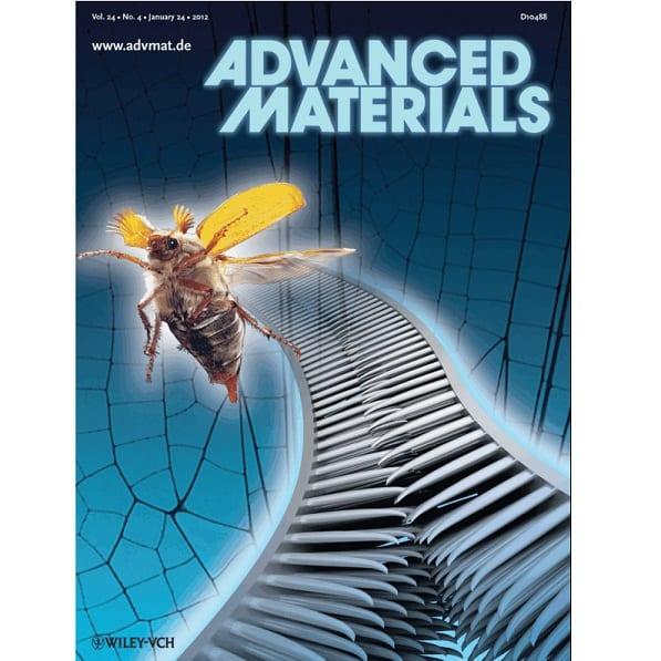Beetle-mimetic Velcro?
