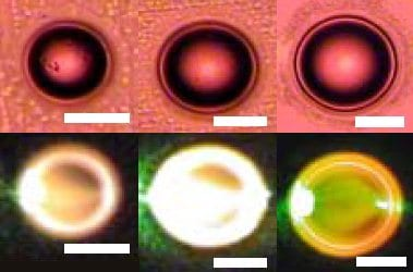 Making microlasers the flexible way