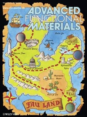 Seeking Treasures in Fau Land: Hierarchical Zeolite Design