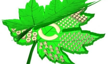 Nanoscale materials for photosynthesis